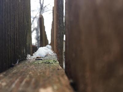 170427_Dennis-Fence